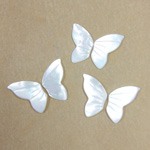 Shell Flat Back Stone - Butterfly Wings 15.5x10MM WHITE MOP